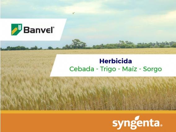Herbicida Banvel ®