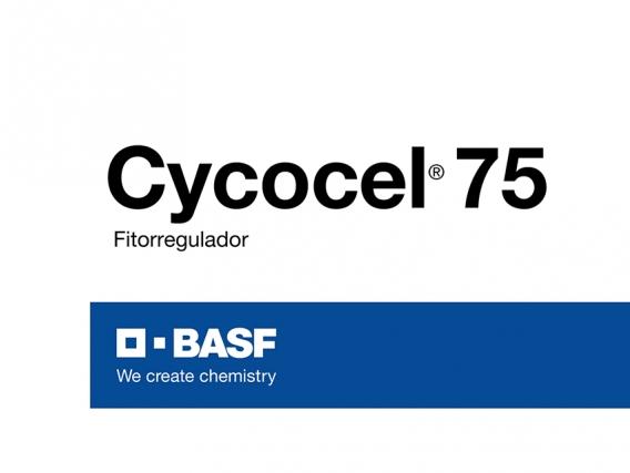 Fitorregulador Cycocel®  75
