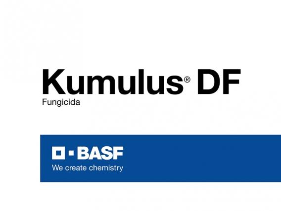 Fungicida Kumulus® DF Azufre - BASF