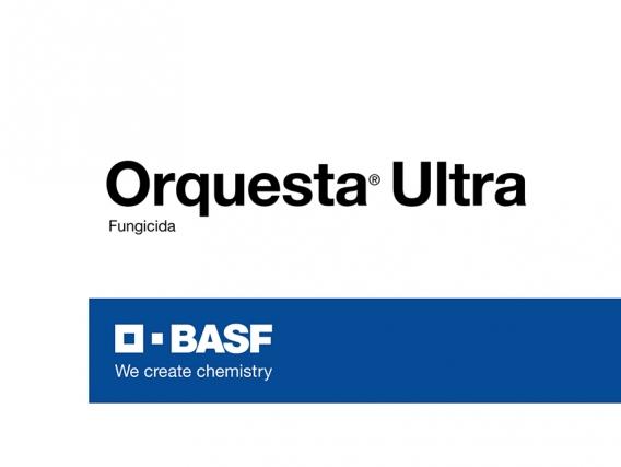 Fungicida Orquesta® Ultra - BASF