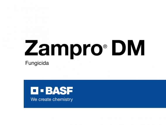 Fungicida Zampro®