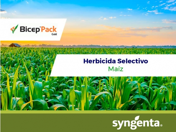Herbicida Bicep ® Pack Gold