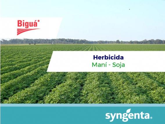 Herbicida Bigua