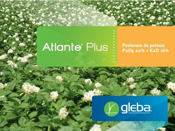 Bioestimulante Atlante®  Plus