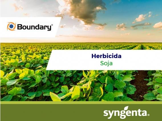 Herbicida Boundary®