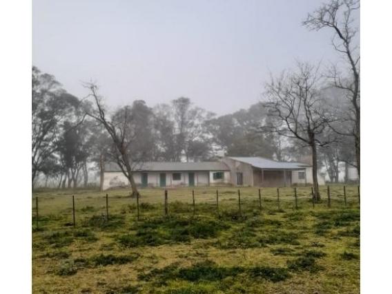 Campo 1000 Has - Superficie Agrícola - Sobre Ruta