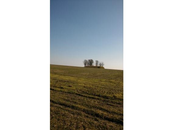 "Campo 46 Ha. ""agricultura"""