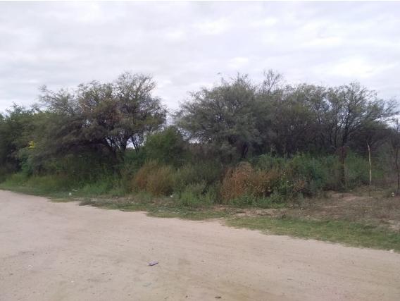 Campo 57 Has En Candelaria