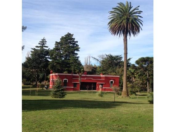 Campo en venta en Lobería 370 hs Apto Agricultura