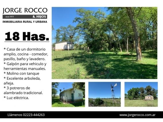 Campo De 18 Has En Ranchos - Bs. As. -
