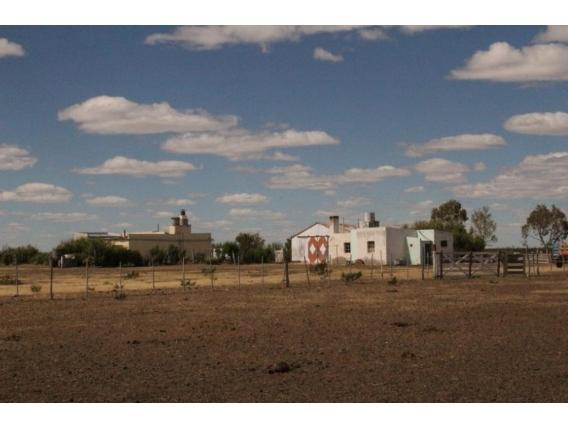 Campo De 20300Has En Dolavon, Chubut.