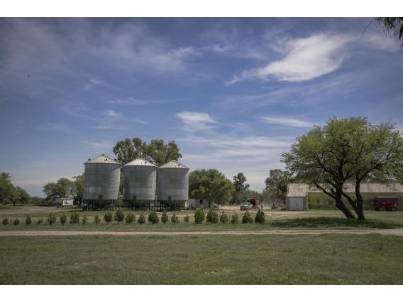 Campo de 8365 Has en Trenel, La Pampa