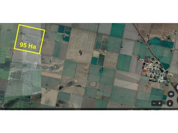 Campo Agrícola De 95 Has En Esmeralda, Santa Fe