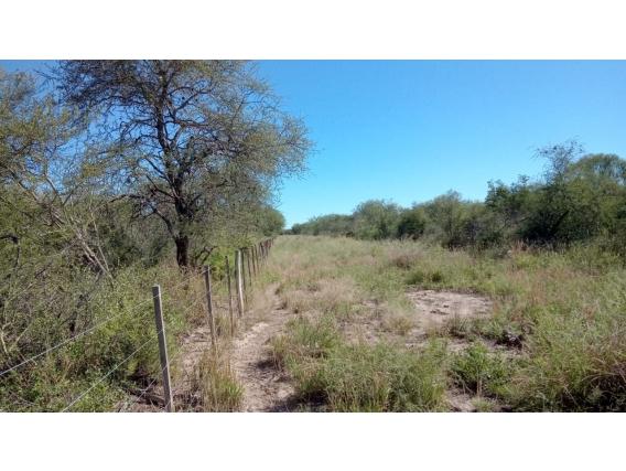 Campo De 1361 Has En Suncho Corral, Santiago del Estero