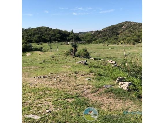 Campo En Venta - 30 Hect - El Volcán - San Luis