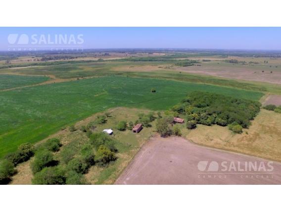 Campo En Venta 500 Ha - Exaltacion De La Cruz , G.b.a