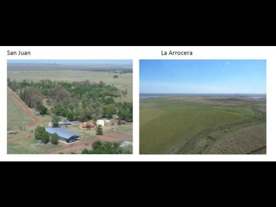 Campo De 5482 Has Venta Depto. Artigas - Uruguay