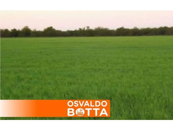 Campo En Venta. Ataliva Roca, La Pampa. 300Ha. Mixto.