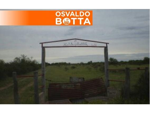 Campo En Venta. Bernasconi, La Pampa. 990Ha. Ganadero.