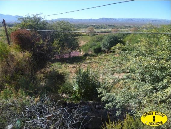 2073 Hp Campo En Venta. Cachi. 2.5 Has. Uso Agrícola