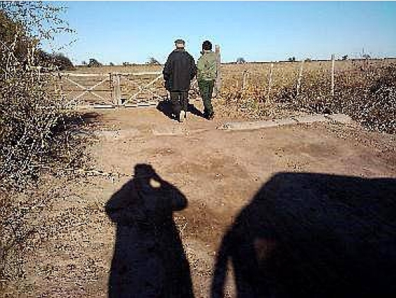 Campo En Venta. Col. Dora, S Del Estero. 70Ha. Agrícola