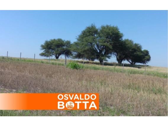 Campo En Venta. Doblas, La Pampa. 670 Ha. Mixto