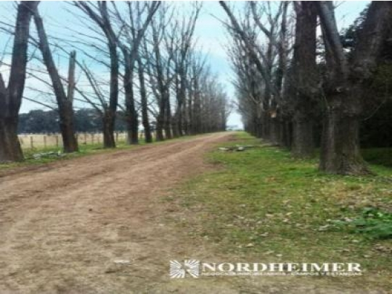 Campo En Venta En General Las Heras. 185 Has. Mixto.