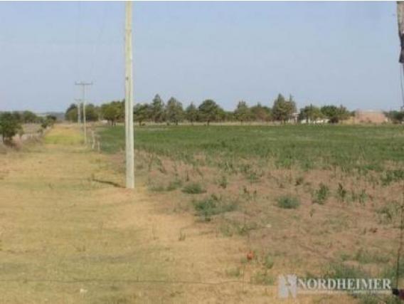 Campo En Venta En Pichi Huinca. 623 Has. Mixto.