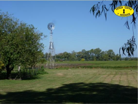 1051HP Campo En Venta Exaltación De La Cruz Bs As.67 Has