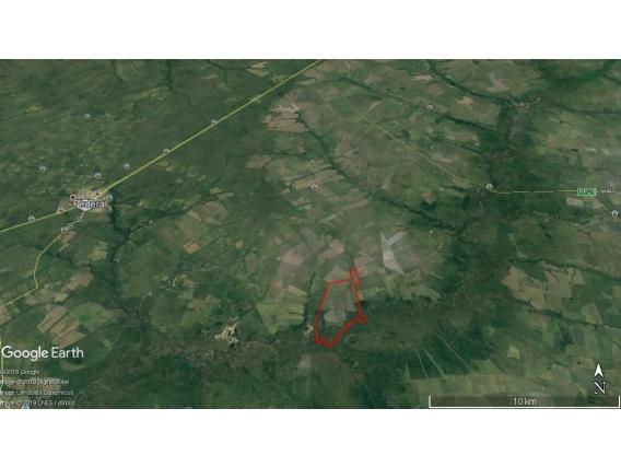 Campo En Venta Federal- E.r.- 953 Has. Arroz/ Agricult.