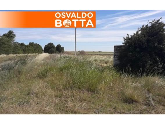 Campo En Venta. Guatraché, La Pampa. 1200 Ha. Mixto.
