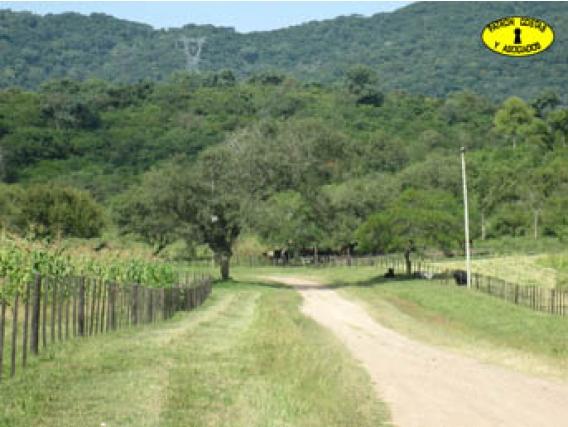 0705Hp Campo En Venta. La Caldera. 41 Kms. Otro Uso