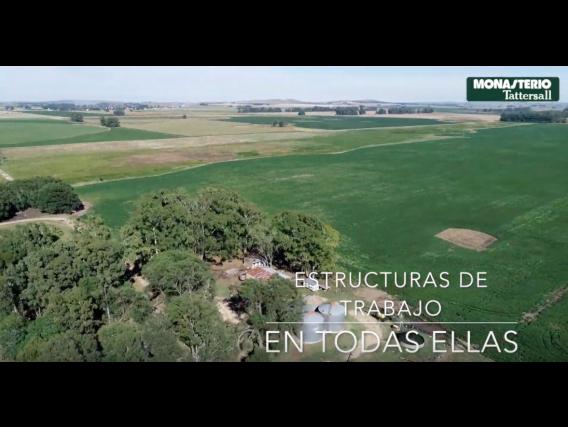 Campo En Venta. Necochea, Bs As. 1657 Has. Agrícola