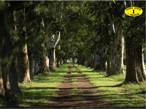0965MB Campo En Venta. Pilar. Buenos Aires. 25 Has.