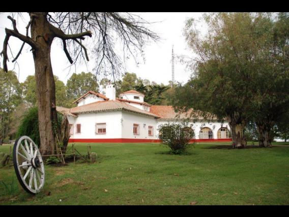 Campo Ganadero - Lamadrid