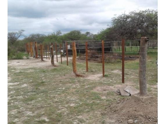 Campo de 195 has en Vera y Pintado, Santa Fe.