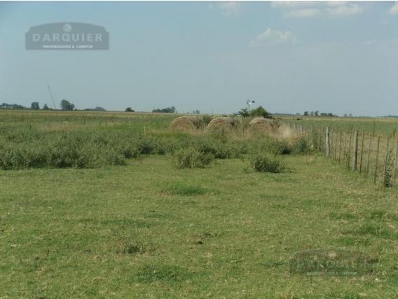 Campo Ganadero En Venta - 76 Ha - Ranchos