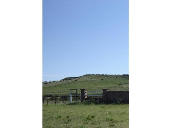 Campo Ganadero En Venta En Zona Bahía Blanca