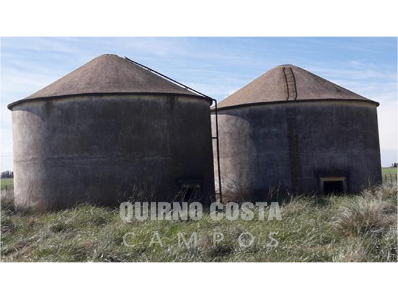 Excelente Campo Agrícola En Necochea 258 Ha