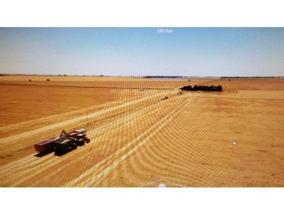 Campo Plano Con Aptitud Agrícola