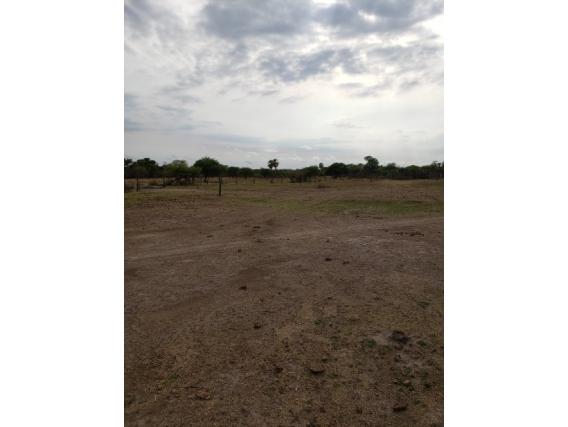 Campo Ganadero 625 Has A 25 Km Machagai - Dolar Oficial