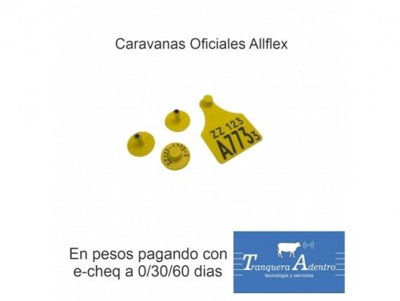Caravanas Oficiales Senasa Allflex