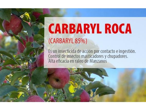 Insecticida Carbaryl Roca (Carbaryl 85%) Agro Roca