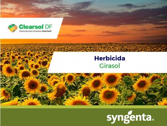 Herbicida Clearsol ® DF