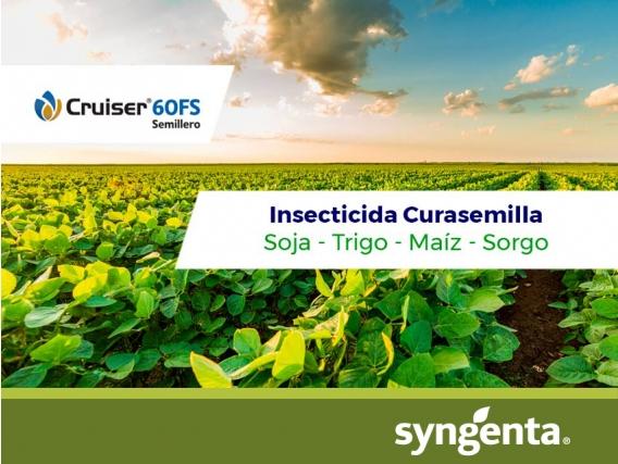 Insecticida - Curasemilla Cruiser 60 FS Semillero