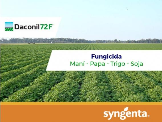 Fungicida Daconil 72 F® Clorotalonil - Syngenta
