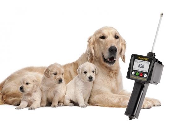 Detector De Estro Caninos - Draminski