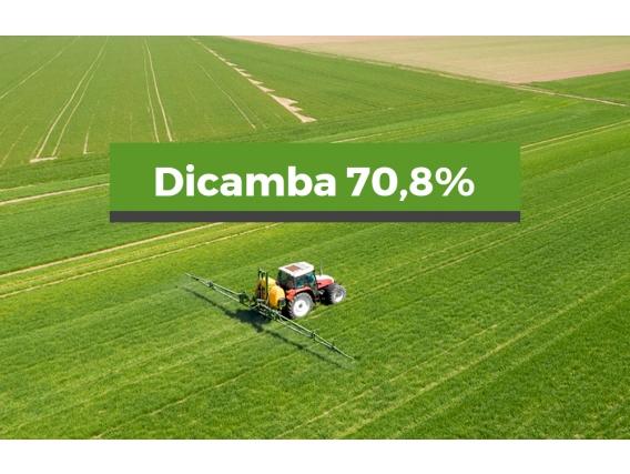Herbicida Dicamba 70,8%