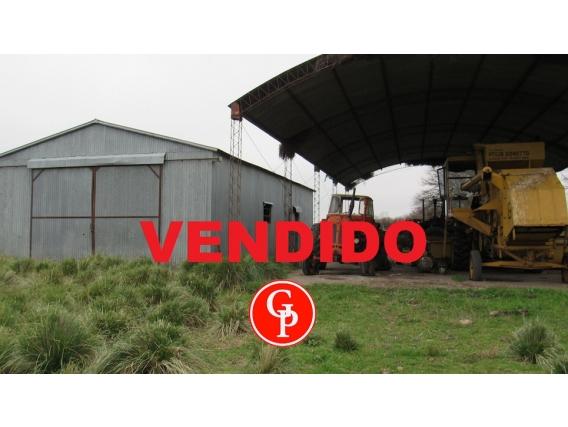 En Venta 1.250 Has. En Hucal - La Pampa -