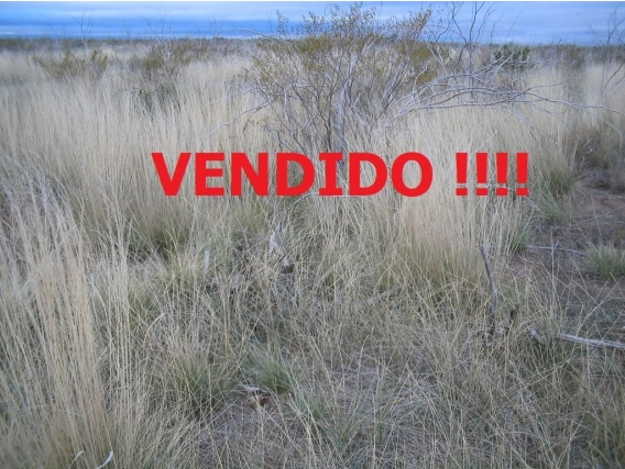 En Venta, 2.960 Has. Lihuel Cale - La Pampa -